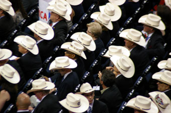 Texas delegates at RNC, 2012