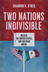 Two Nations, Indivisible book cover