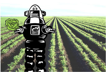 Robot in a field holding a head of lettuce