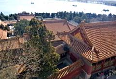 view from top of Longevity Hill